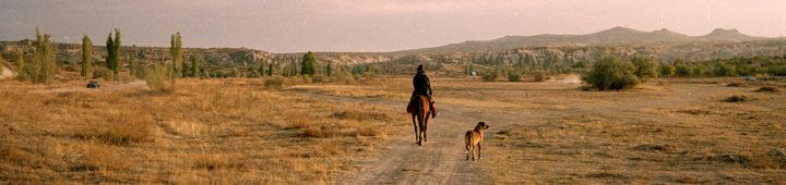 Turkey: Selçuk, Şirince, Göreme