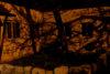 Dark tree shadows from streetlight against building